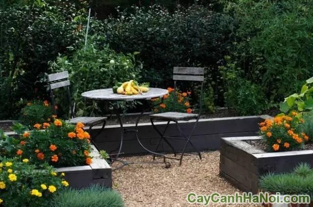 thiết kế tiểu cảnh sân vườn cho quán cà phê