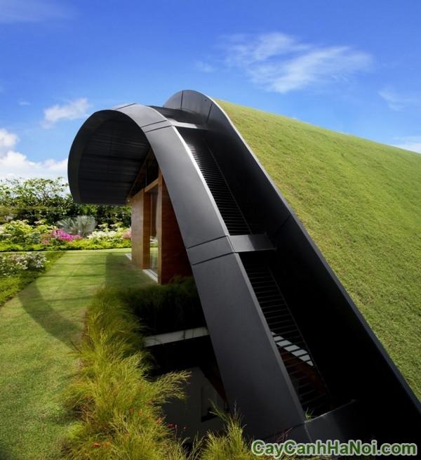 top công trình xanh độc đáo trên thế giới