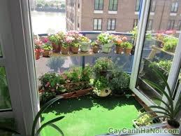 cảnh quan sân vườn cho căn hộ chung cư