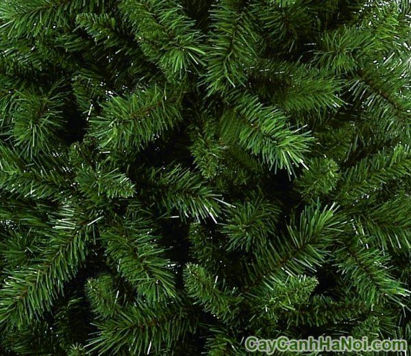 dịch vụ cho thuê cây thông noel tại hà nội